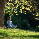 Meditasi Bisa Menyembuhkan Stress
